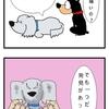 犬の下痢にはビオフェルミン