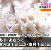 熊本県内各地で桜見ごろ 土日はお花見日和