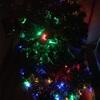 No,200 我が家にクリスマスツリーがやって来た