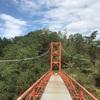 和歌山県橋本市内で最大の面積を誇る公園【杉村公園】に行って来た!