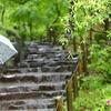 今年の梅雨のビジネスアイテム『濡らさない傘のアンヌレラ』