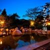 2つの源泉が楽しめるホテルの温泉、湯の山温泉 湯元グリーンホテル