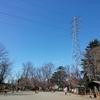 2020-03-11 昭島市営公園