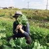 【15分ぶろぐ 46日目】極寒の中の野菜売り・・。その中で見えたことって?っていうお話