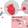 【簡単!サイエンス】 新型コロナウイルスの予防ワクチン:後編