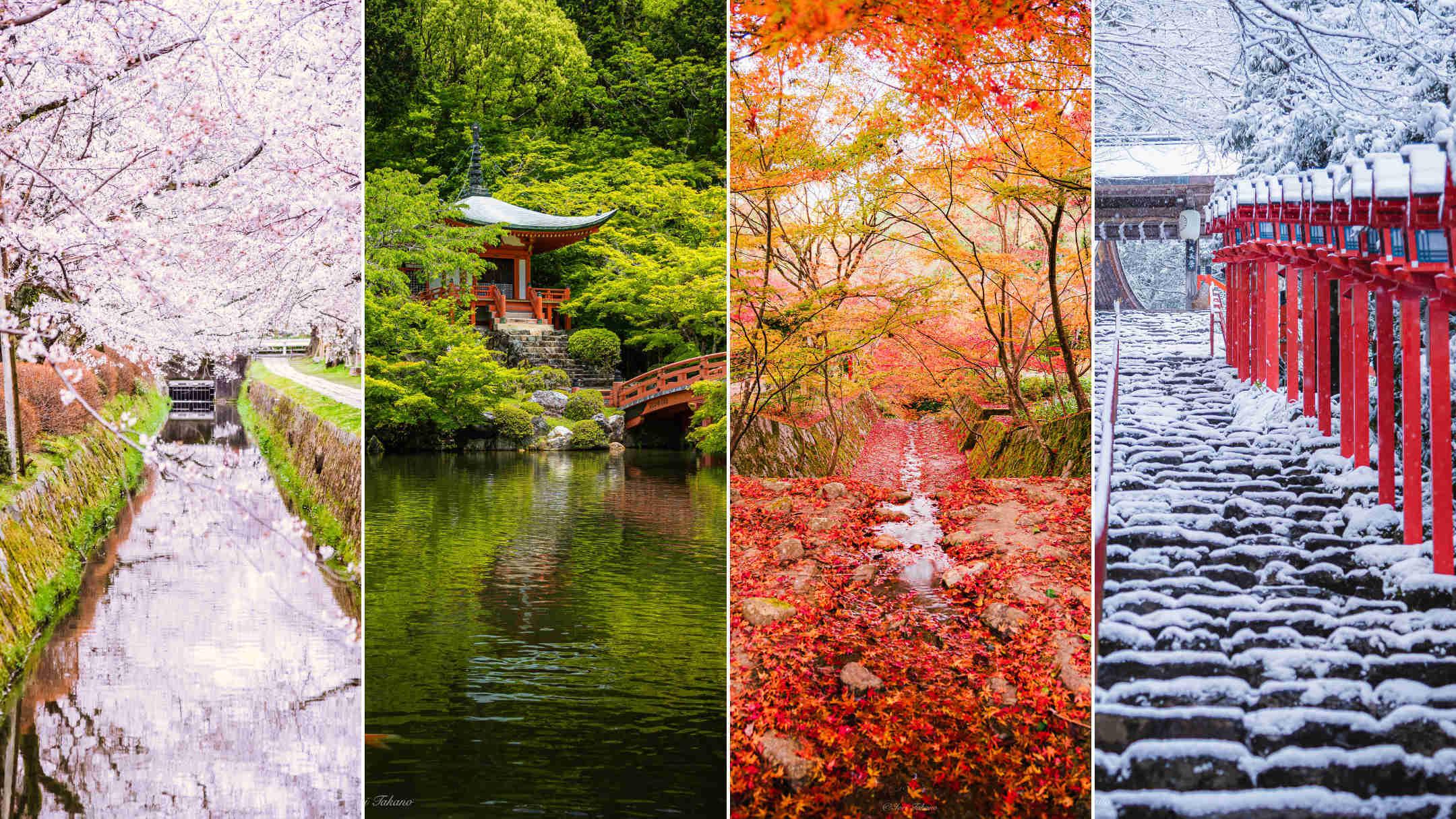 京都を撮り続けるフォトグラファーが教える、絶景撮影スポット10選 – 定番から四季のイチオシ、穴場まで