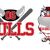 関西独立リーグ「06BULLS」球団理事に就任しました。