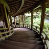 紅葉スポットの定番である京都 永観堂は新緑の時期にも訪れたい場所です。(Kyoto, Eikando)