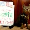 本日のポスター(2016年11月6日)