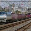 4月8日撮影 東海道線 平塚~大磯間 貨物列車2本撮影 5075ㇾ 2079ㇾ