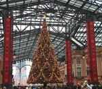 ディズニーランドのクリスマス詳細!雨降ると寒いので防寒対策必須!