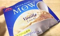 バニラアイス(MOW)に白醤油をたらりで塩アイス