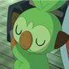 ポケモンアニメにサルノリが登場。可愛すぎて癒されます…。