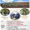 三宅島ファミリーキャンプ2017 募集開始!!