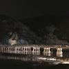 京都寺社遠征 その2~野宮神社、常寂光寺、宝厳院、法輪寺(嵐山花灯路)