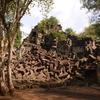 ラピュタのモデル!?カンボジアのベンメリアへ。