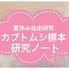 【小学4・5・6年生夏休み自由研究・工作】カブトムシ・クワガタ標本と研究ノート