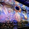 美術・芸術のこと~ディマシオ美術館を再訪