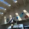 水族館 写真 名古屋港水族館