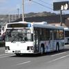 鹿児島交通(元東武バス) 2260号車