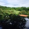 一ヶ月ぶりの京都梅小路公園