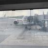 東南アジアで中東のロイヤルヨルダン航空に乗ってみよう!