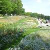 【里山ガーデンフェスタSpring2019】ここは夢の国?花と緑と優しい香りに包まれる里山