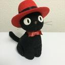 井乃猫ブログ
