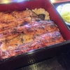群馬県渋川市 うなぎ料理 魚清 うな重が1520円からとリーズナブル!活きた鰻から調理する老舗鰻屋で昼酒