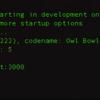 Rails5 + nginx + pumaの起動問題