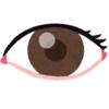 右目が急に見えなくなった件の検査結果
