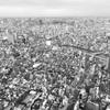 なぜ上京するの?なぜ移住するの?