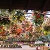 特大の花飾り④:松江フォーゲルパーク(島根県松江市)