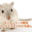 モンテッソーリ教材「チーズとネズミのひも通し」は長く遊べる知育玩具