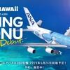 ANA A380が成田空港にやってきた! フライングホヌ 空飛ぶ巨大ウミガメに乗るためには!