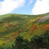 羊蹄山の紅葉(北海道)