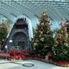 クリスマス気分のフラワードーム@シンガポール