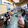 南国かごしまの旅④鹿児島空港の遊び方