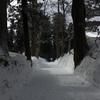 冬の鶴岡へ行ってきました。
