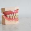 妊娠後期、虫歯&歯肉炎大爆発。歯痛のツボは効く?