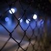 実刑確定後に逃走、小林誠容疑者、実刑確定の人がなぜ保釈されていた?
