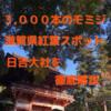 【3,000本のモミジが見頃!】滋賀県の紅葉スポット「日吉大社」を徹底解説