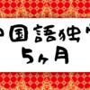 【中国語のすゝめ#7】今日で中国語の勉強を始めてから5ヶ月が経ちました!(現在のレベルなどの報告)