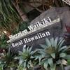 ハワイ旅行(1)泊まったホテルはシェラトン・ワイキキ・ホテル【20階・オーシャンフロント】~ホテル編~