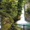 熱海旅行記④滝巡りと修善寺