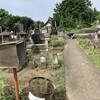 旧墓地西エリア〜草取り&みそはぎ撤収