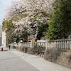関東近郊旅行:三島、西伊豆、修善寺