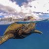 不思議な写真が撮れる!海やプールのGoPro(ゴープロ)にはドームポートが必須アイテムだぞっ!