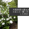 大阪府民の森ぬかた園地のあじさい園へ行ってきました2021