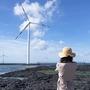 済州島(チェジュ島)フォトスポット #映画やドラマのロケ地にもなった「新昌風車海岸道路」